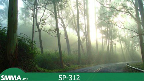estrada_parque_02