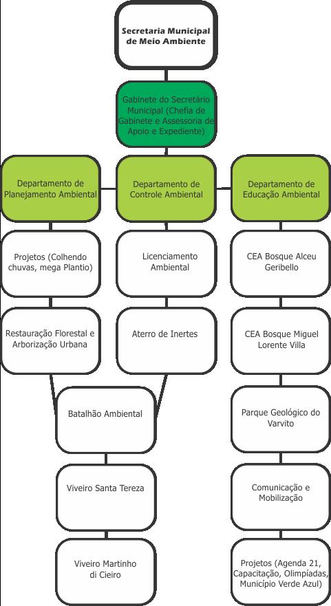 organogramaa
