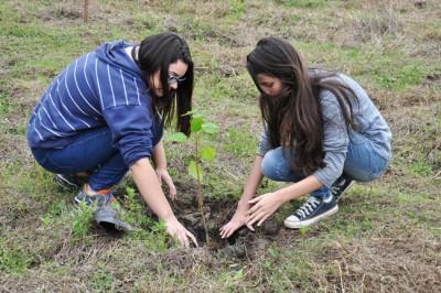 Projeto Plantar prossegue com atividades em vários pontos da cidade