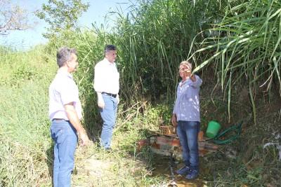 Nascente do Itaim Guaçu será recuperada com plantio de mudas nativas